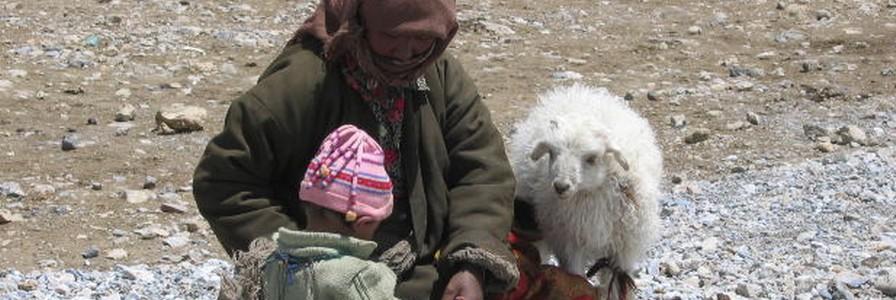 Tibetische Hundenamen